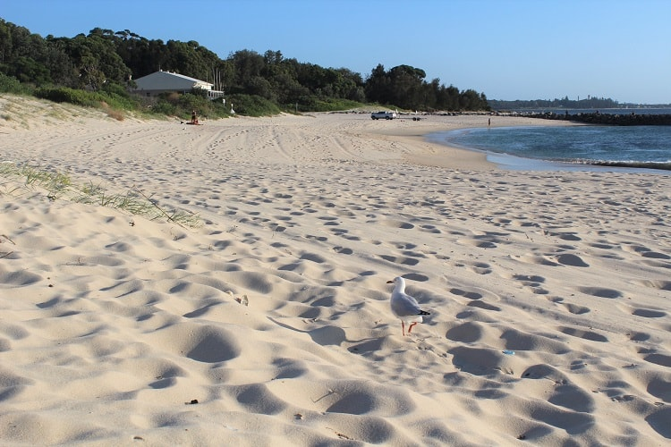 Guide to Sydney, Australia's south-eastern beaches, from Maroubra to Yarra Bay. Parking, facilities, activities and more.