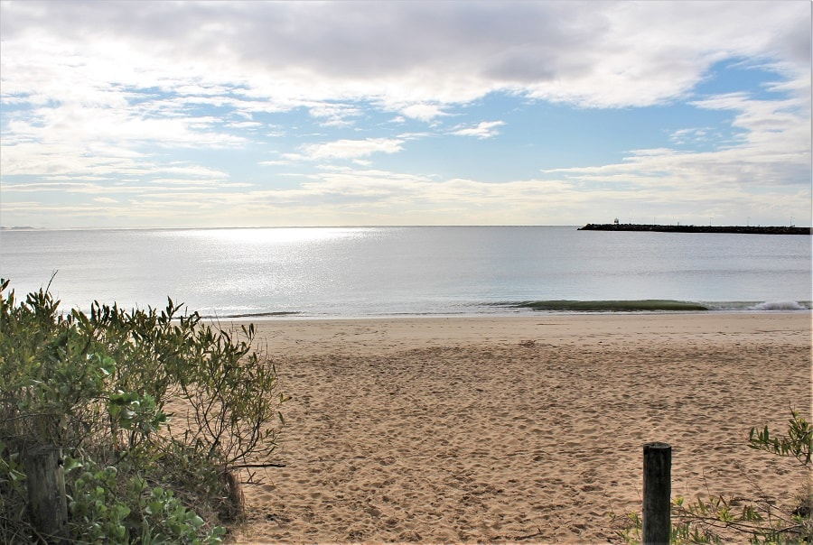 Things to do in Newcastle, Australia. Includes where to find shops and cafes in the city, great NSW beaches such as Nobbys Beach, the stunning Stockton sand dunes and where to find kangaroos! A great trip from Sydney or east coast Australia road trip destination.