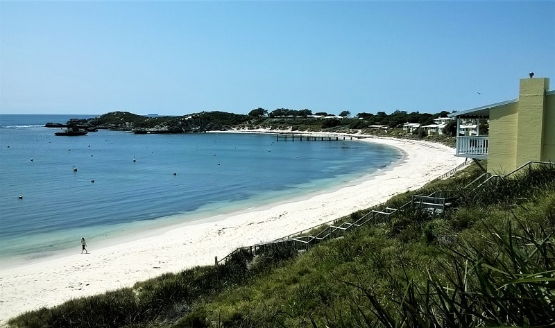 Your guide to Rottnest Island, Western Australia, an idyllic day trip from Perth. Find out about the beautiful Rottnest Island beaches, snorkelling, camping & budget accommodation on Rottnest Island, cute quokkas, cycle hire, where to eat & drink & the cheapest days for the Rottnest ferry.