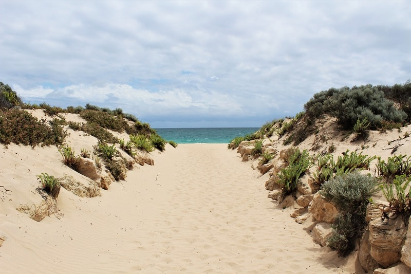 What to do in Yalgorup National Park, Western Australia: visit the ancient Lake Clifton thrombolites, go camping at Preston Beach, follow woodland walking trails, see plenty of Australian wildlife & possibly Christmas spiders!