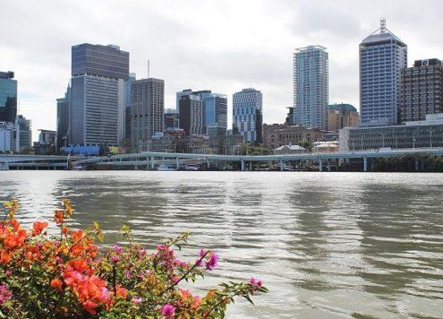 Study in Brisbane | Brisbane Study Abroad Programs