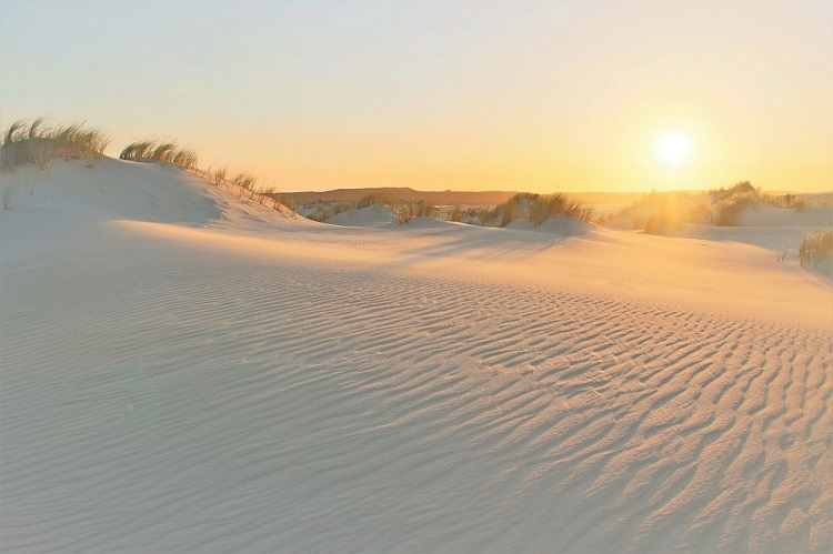 Visit Yeagarup Sand Dunes near Pemberton, Western Australia. Find out how to visit these stunning dunes in D'Entrecasteaux National Park WA by foot or 4WD, where to camp, and see amazing sunset pictures.