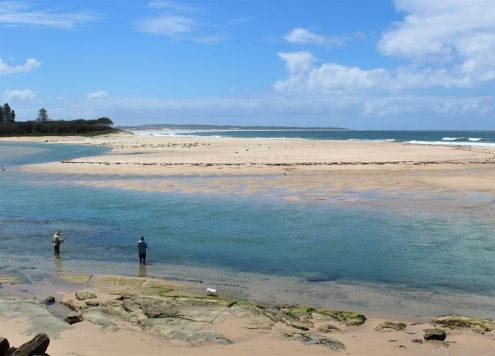 Enjoy a nature-filled trip to The Entrance in Central Coast NSW, Australia, just 90 minutes' drive from Sydney. Discover amazing beaches, including Shelly Beach and Bateau Bay, short coastal walks and the best places to see from Avoca Beach up to Norah Head.