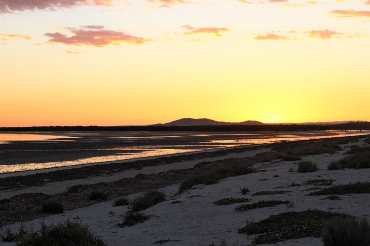 Find out why Whyalla South Australia, on the beautiful Eyre Peninsula, is the perfect destination to end a Perth to Adelaide road trip.