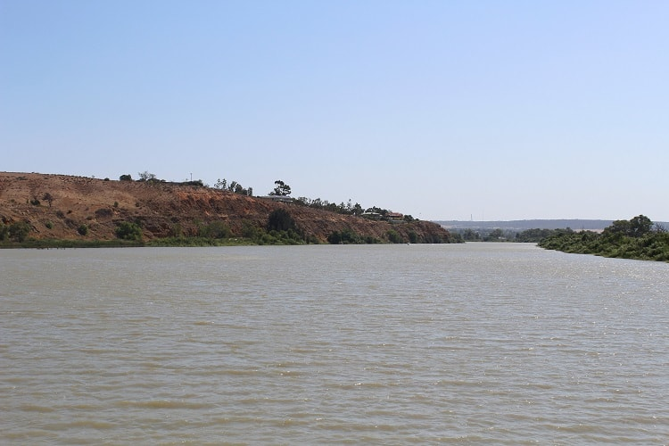 Murray River paddle boat cruise in South Australia.