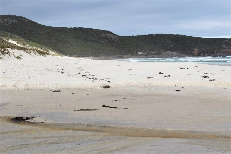 Discover Wilsons Promontory National Park on a great trip from Melbourne. Stay at Tidal River campground or hike to beaches & scenery.