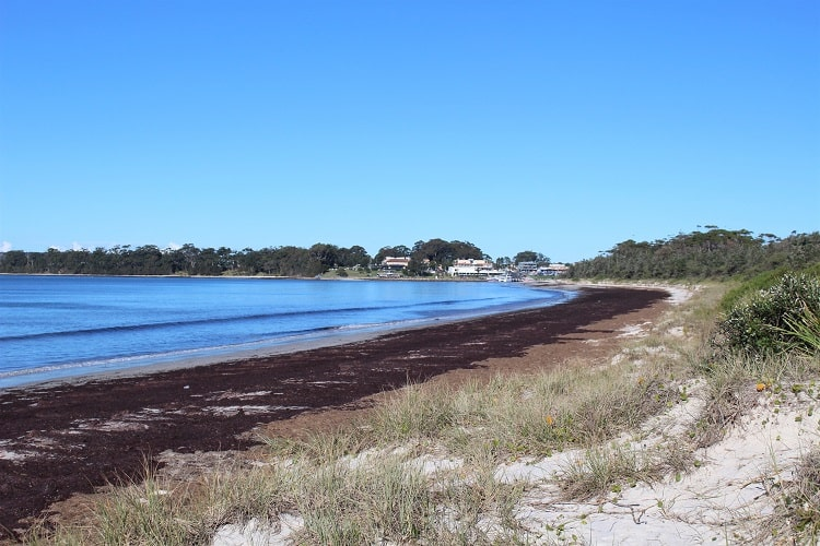 Callala Beach, the longest beach in Jervis Bay Australia.