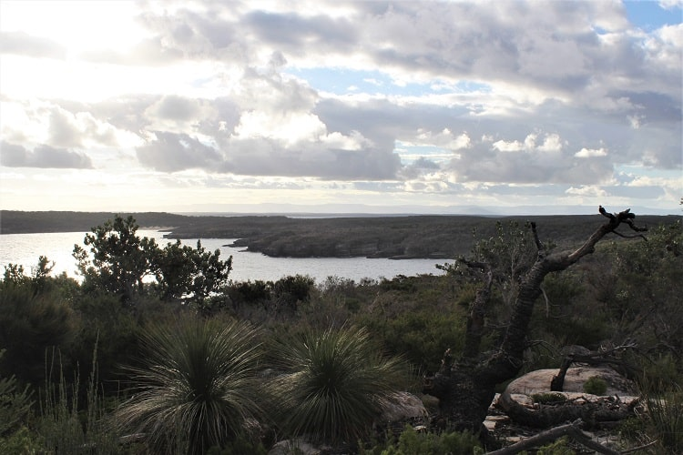 Beecroft Peninsula lookout at Point Perpendicular, NSW.