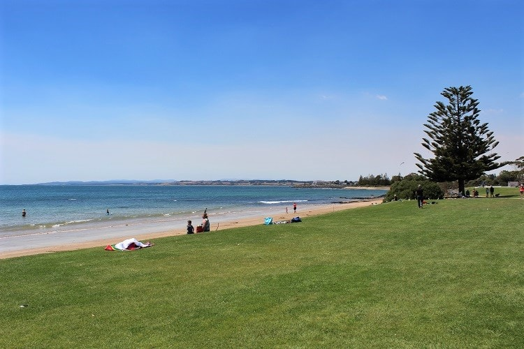 Bluff Beach in Devonport on a sunny day.