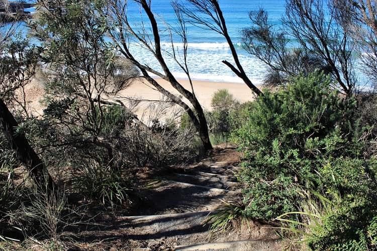 Emily Miller Beach in Murrararang National Park