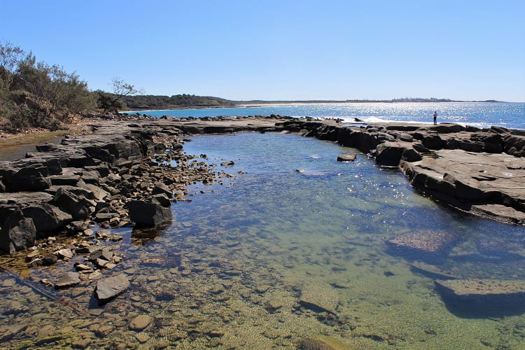 Rock pool on Angourie coastline between the Blue Pool and Green Pool.