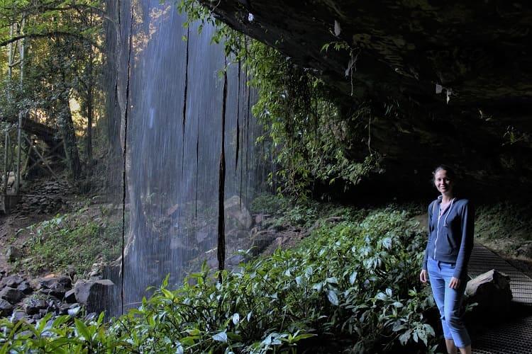 Standing behind Crystal Shower Falls, Dorrigo National Park.