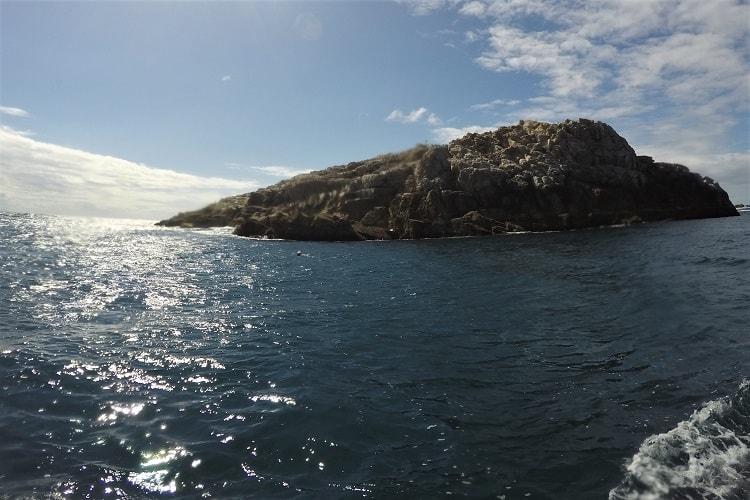 Fish Rock at South West Rocks.