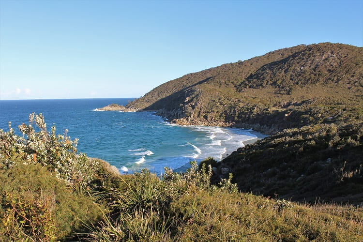 Coastal view at Trial Bay lookout, New South Wales.