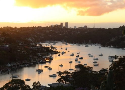 Discover the best suburbs in Sydney: recommendations from a house sitter who's had almost 100 house sits in Sydney.