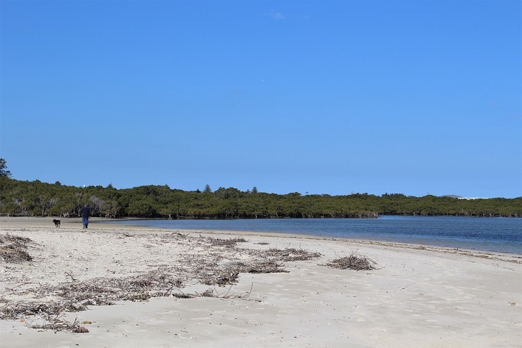 Dog walking at Bonna Point at the end of Silver Beach in Kurnell, Sydney.