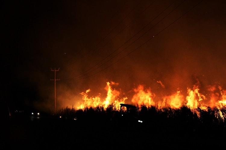 Controlled burning in Yamba NSW.
