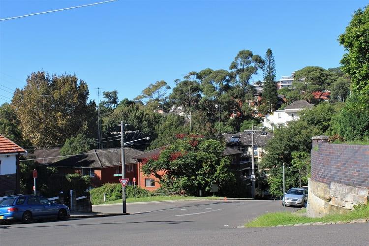 A typical street in Randwick in Sydney's Eastern Suburbs.