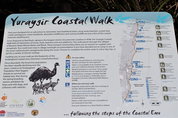 Information and map of Yamba coastal walk (Yuraygir walk) from ANgourie Point to Red Rock.