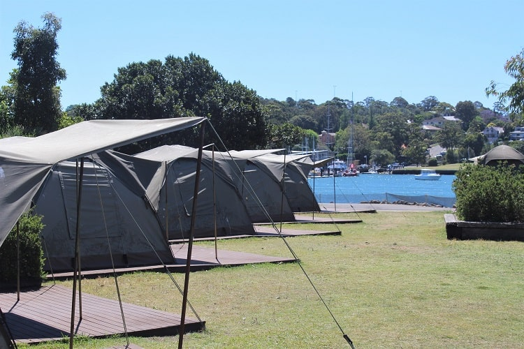 Tents lined up by Sydney Harbour for camping at Cockatoo Island!