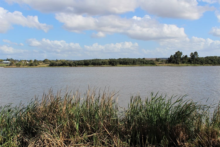 The banks of the Clarence River in Grafton Australia.