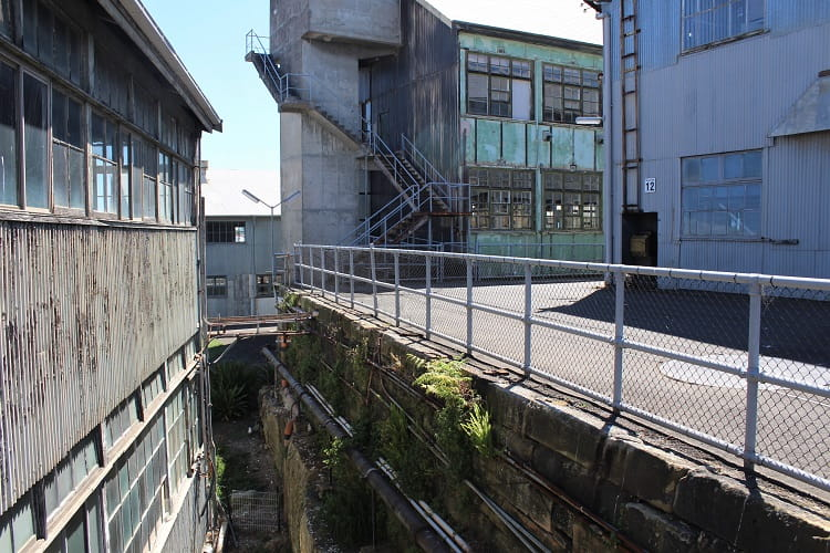 Abandoned buildings in the ship design precinct at Cockatoo Island.
