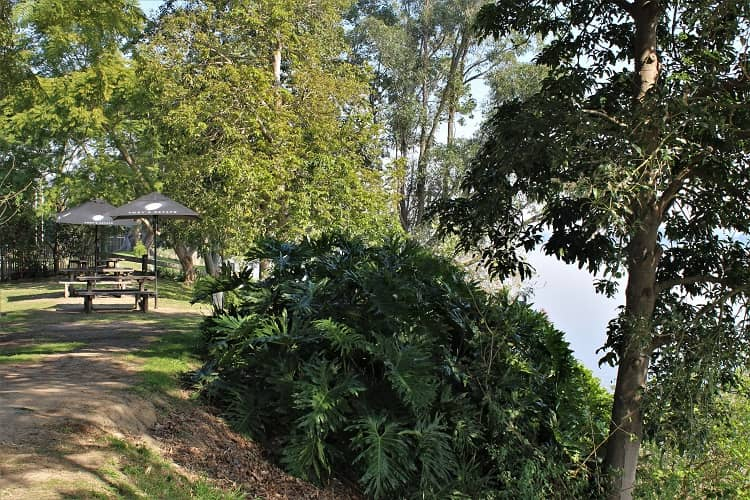 Beautiful riverside garden at Hotel Ulmarra, NSW.
