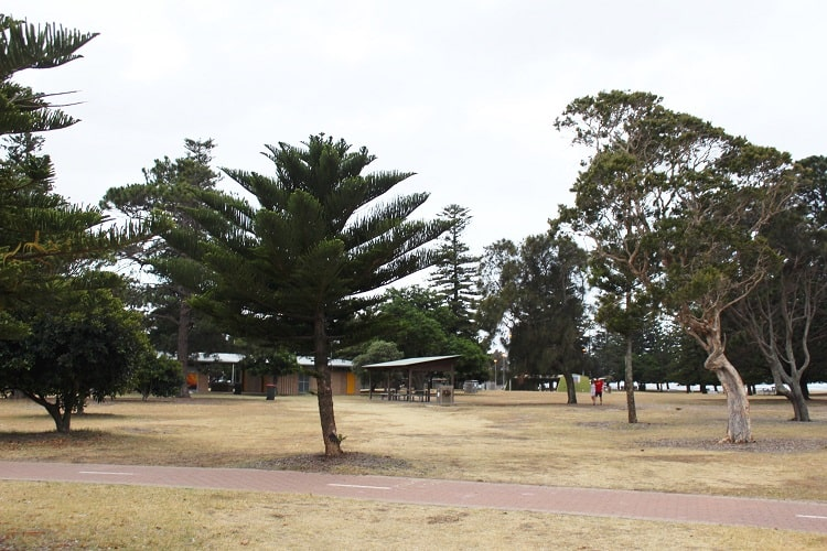 Peter Depena Reserve in Sandringham, Sydney: toilets and barbecue facilities.