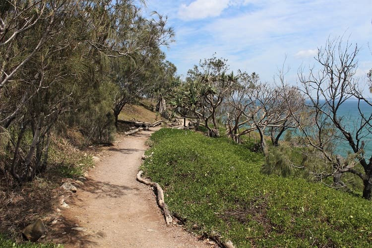 Walking track through Noosa National Park to Picnic Cove at the Sunshine Coast, Australia.